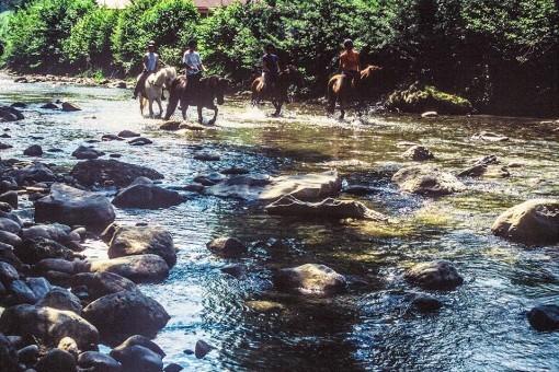 Reiten im Fluss