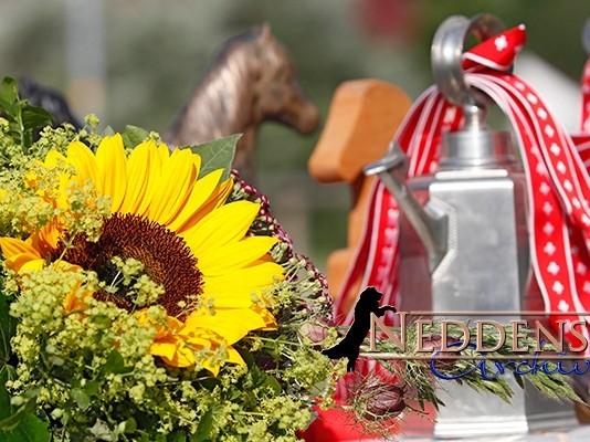 Islandpferde-Schweizermeisterschaften in Brunnadern 06. - 09. August 2020